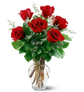 6 Red Roses in Lewisville TX, D.J. Flowers & Gifts
