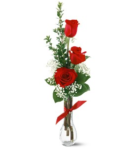 3 Red Roses in Peachtree City GA, Peachtree Florist