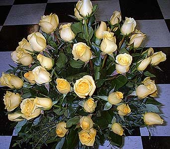 Texas Gold - 50 Yellow Roses in Dallas TX, Z's Florist