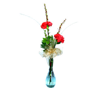2 Red Carnations in a Clear Glass Bud Vase, flowershopping.com