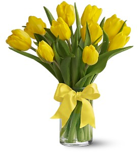 Teleflora's Sunny Yellow Tulips in San Francisco CA, Fillmore Florist