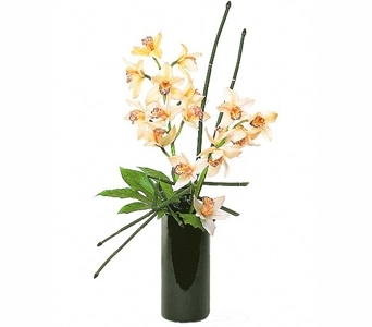 Artful Orchids in Seattle WA, Topper's European Floral Design