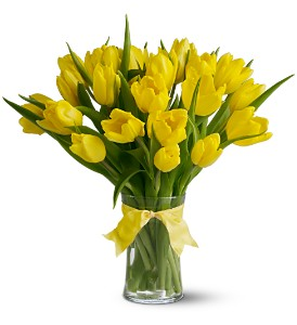 Spring Tulips Deluxe - Yellow in San Francisco CA, Fillmore Florist