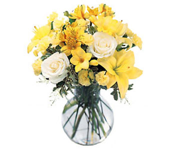 The FTD Your Day Bouquet in Cohasset MA, ExoticFlowers.biz