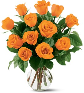 12 Orange Roses in Concord CA, Jory's Flowers