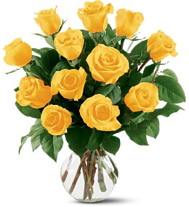 12 Yellow Roses in Metairie LA, Villere's Florist