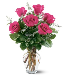 6 Hot Pink Roses in Orland Park IL, Bloomingfields Florist