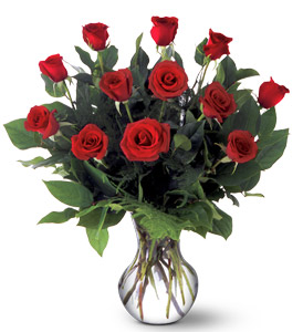 A Dozen Premium Red Roses in Arlington Heights IL, Sylvia's - Amlings Flowers