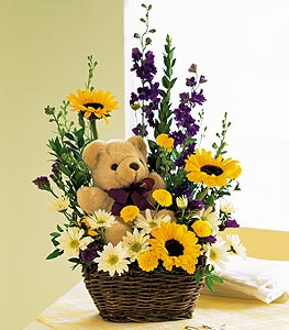 Basket & Bear Arrangement in Dallas TX, In Bloom Flowers, Gifts and More