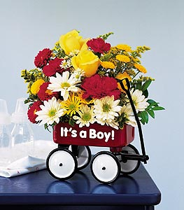 Teleflora's Baby's First Wagon - Boy in Denver CO, Lehrer's Flowers