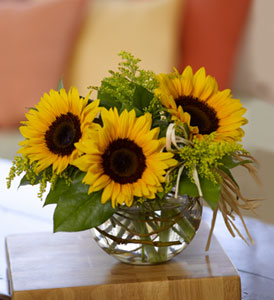Teleflora's Sassy Sunflowers in Port St Lucie FL, Flowers By Susan