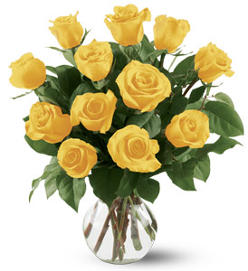 A dozen yellow roses arrive perfectly arranged in a clear glass vase. From Plaza Flowers, your King of Prussia Florist.