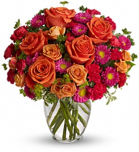 How Sweet It Is in Fayetteville AR, The Showcase Florist, Inc.