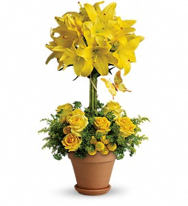 Yellow Fellow in New York NY, Fellan Florists Floral Galleria
