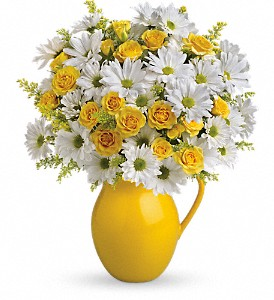 Teleflora's Sunny Day Pitcher of Daisies in North Olmsted OH, Kathy Wilhelmy Flowers