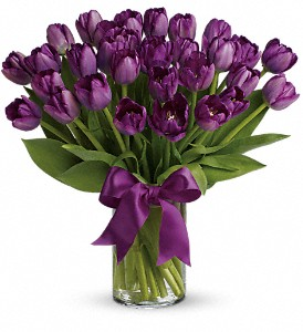 Passionate Purple Tulips in Westminster CA, Dave's Flowers