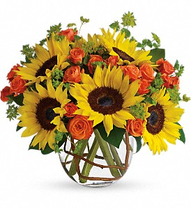 Sunny Sunflowers in Columbus IN, Fisher's Flower Basket