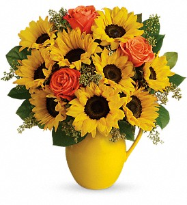 Teleflora's Sunny Day Pitcher of Sunflowers in Oklahoma City OK, Array of Flowers & Gifts
