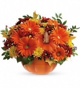 Teleflora's Country Pumpkin in West Bend WI, Bits N Pieces Floral Ltd