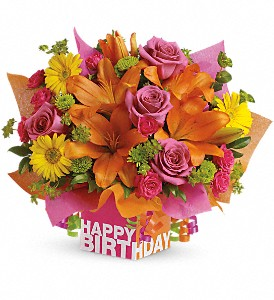 Teleflora's Rosy Birthday Present in Washington, D.C. DC, Caruso Florist