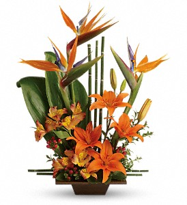 Teleflora's Exotic Grace in Palm Springs CA, Palm Springs Florist, Inc.