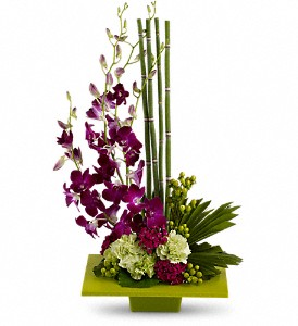 Zen Artistry in Houston TX, American Bella Flowers