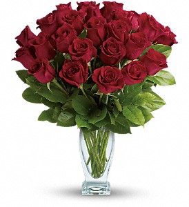 Teleflora's Rose Classique - Dozen Red Roses in DeKalb IL, Glidden Campus Florist & Greenhouse