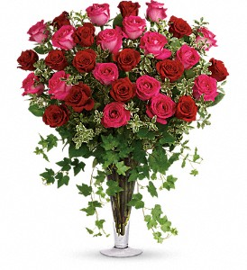 Dreaming in Pink - 18 Long Stemmed Pink Roses in Abilene TX, Philpott Florist & Greenhouses