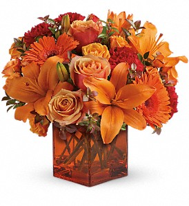 Teleflora's Sunrise Sunset in Bel Air MD, Petals 'N Posies Florist