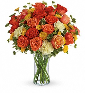 Citrus Kissed in Rochester MN, Sargents Floral & Gift