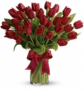 Radiantly Red Tulips in Lawrence KS, Owens Flower Shop Inc.