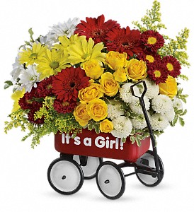 Baby's Wow Wagon by Teleflora - Girl in Hamilton OH, Gray The Florist, Inc.