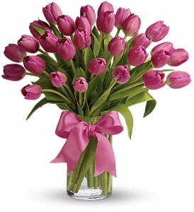 Precious Pink Tulips in Washington, D.C. DC, Caruso Florist