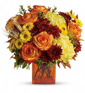 Teleflora's Autumn Expression in Woburn MA, Malvy's Flower & Gifts