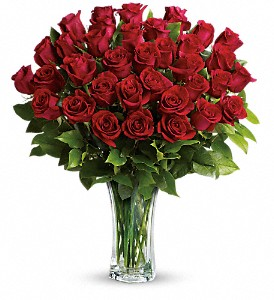 Love and Devotion - Long Stemmed Red Roses in Fremont CA, Kathy's Floral Design