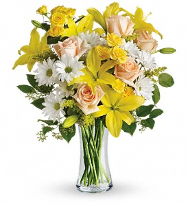 Teleflora's Daisies and Sunbeams in El Cerrito CA, Dream World Floral & Gifts