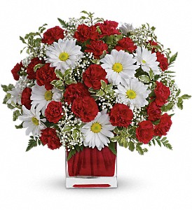 Red And White Delight by Teleflora in Battle Creek MI, Swonk's Flower Shop