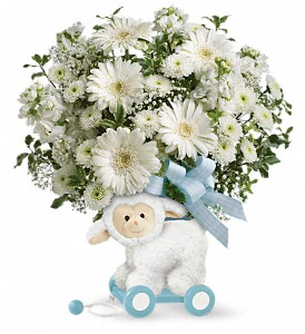 Teleflora's Sweet Little Lamb - Baby Blue in Chesapeake VA, Greenbrier Florist