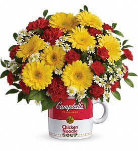 Campbell's Healthy Wishes by Teleflora in Manassas VA, Flower Gallery Of Virginia
