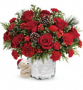 Send a Hug Winter Cuddles by Teleflora in Renton WA, Cugini Florists