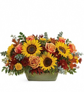 Teleflora's Sunflower Farm Centerpiece in Loveland CO, Rowes Flowers