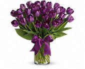 Passionate Purple Tulips in Arlington TN, Arlington Florist