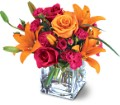 Teleflora's Uniquely Chic Bouquet in Boston MA Exotic Flowers