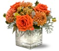 Teleflora's Perfect Orange Harmony in Warwick RI Yard Works Floral, Gift & Garden