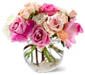 Teleflora's Roses on the Rocks in Boynton Beach FL Boynton Villager Florist