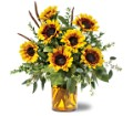 Sunrise Sunflowers Local and Nationwide Guaranteed Delivery - GoFlorist.com