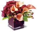 Teleflora's Calla Classique in Oklahoma City OK Array of Flowers & Gifts
