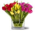 Teleflora's Tulips Together in San Francisco CA Fillmore Florist