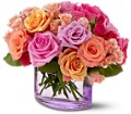 Teleflora's Rose Harmony Local and Nationwide Guaranteed Delivery - GoFlorist.com