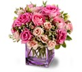Teleflora's Rose Confection in San Clemente CA Beach City Florist